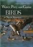 Water, Prey, and Game Birds of North America
